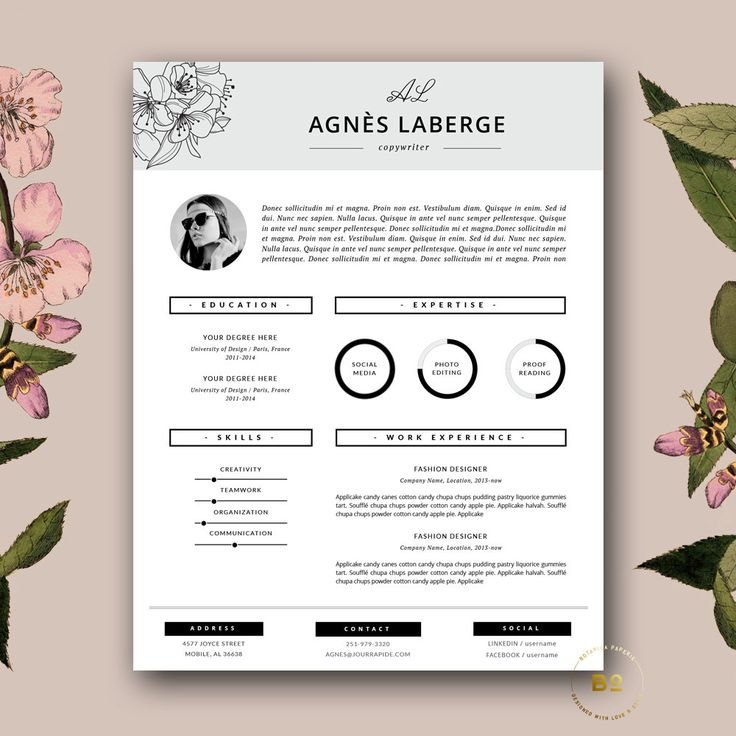 7 the photo cv - Resume Template Ideas