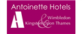Antoinette Hotel Kingston and Wimbledon jobs