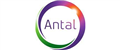 Antal International jobs